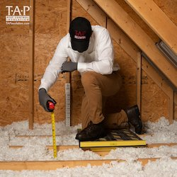 tap pest control insulation